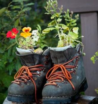 Plantas para casa maceteros originales - Macetas originales para plantas ...