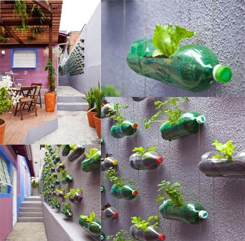 Construir un jard n colgante plantas de interior y for Jardin vertical colgante